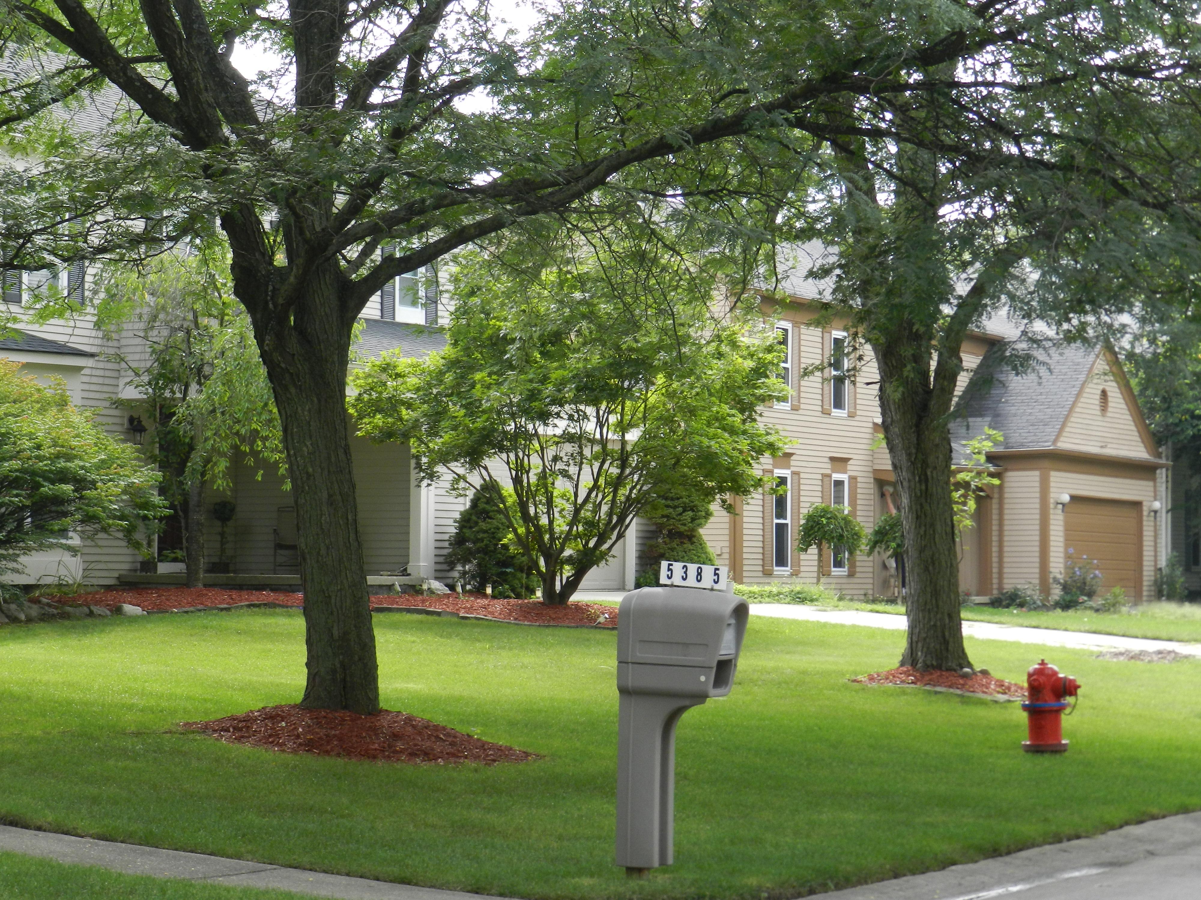 Fox Run Green Neighborhood - West Bloomfield, Michigan